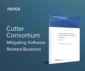 mitigating software related business risk requires systems perspective