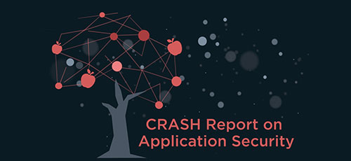 CAST Research On Application Software Security