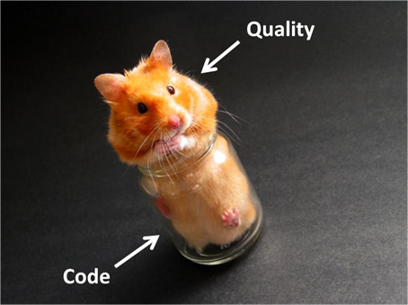 CAST-code-quality-hampster