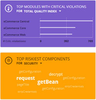 Top Modules with Critical Violations Top Riskiest Components