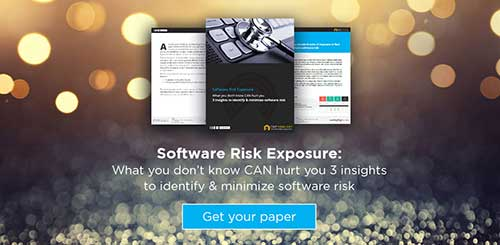 download-hl-it-software-risk-exposure-ebook_thmb